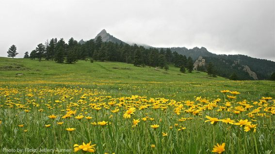 Family Hiking in Boulder, Colorado