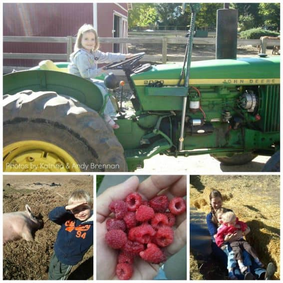 Fort Collins Farms
