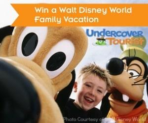 Walt Disney World Giveaway Banner 300x250 Disney Giveaways