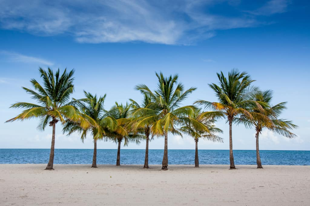 Top 10 Things to Do in Florida with Kids | Florida Family Vacation