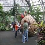 Garfield_Park_Conservatory_Childrens_Garden
