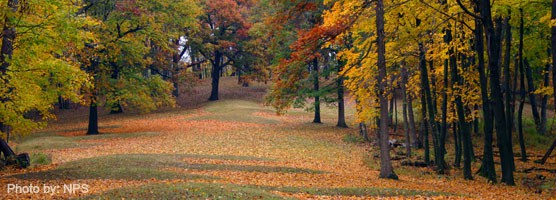 effigy mounds top 10 things to do in iowa