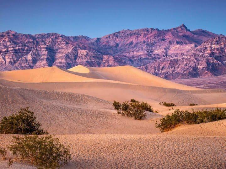 Desert National Parks