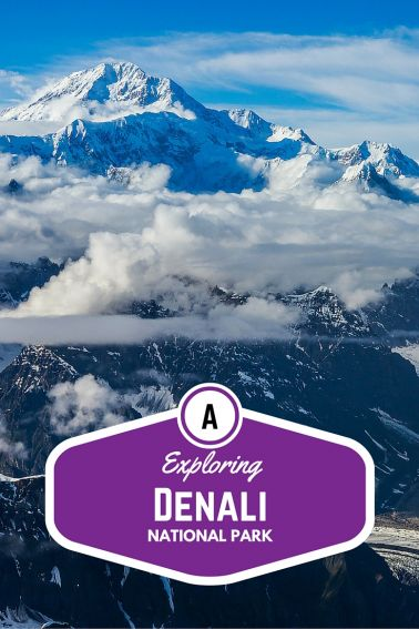 Exploring Denali National Park with Kids