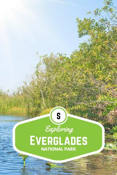 Exploring Everglades National Park with Kids