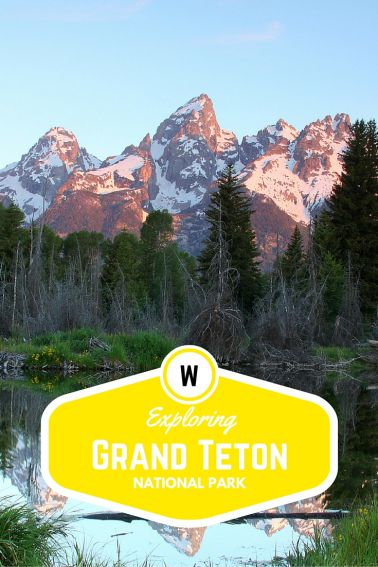 Exploring Grand Teton National Park with Kids