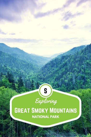 Exploring Great Smoky Mountains National Park with Kids