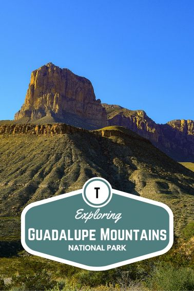 Exploring Guadalupe Mountains National Park with Kids