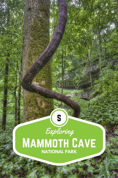 Exploring Mammoth Cave National Park with Kids