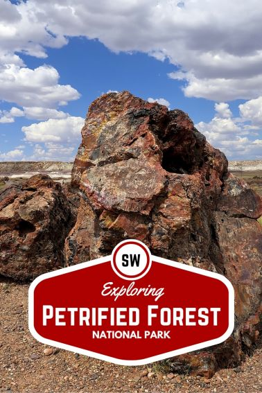 Exploring Petrified Forest National Park with Kids
