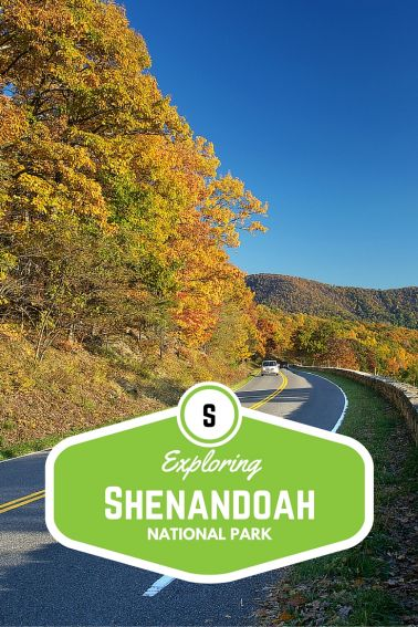 Exploring Shenandoah National Park with Kids