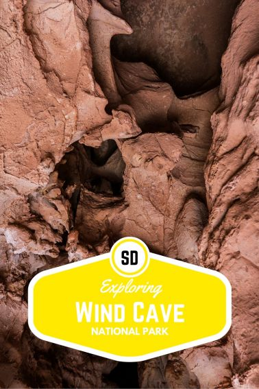 Exploring Wind Cave National Park with Kids