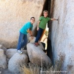 Joshua Tree cracks with kids Trekaroo