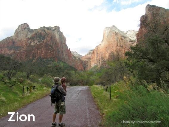 Zion-National-Park-Desert National Parks