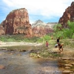 Zion Virgin River with kids Trekaroo