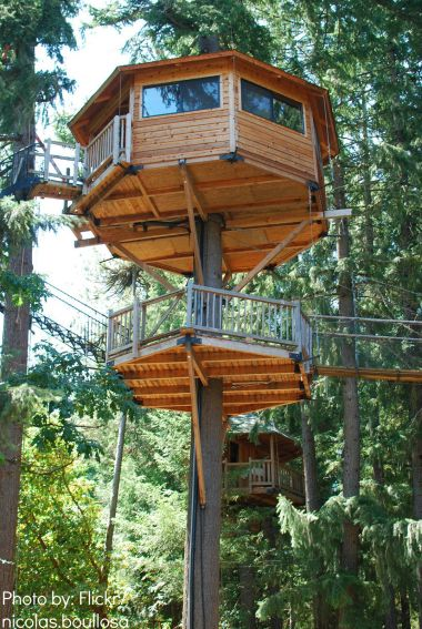 Treehouse C&ing & camping without a tent
