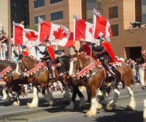 Calgary Stampede Photo by: Flickr/Danteling