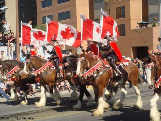 Family Friendly Calgary Attractions: Calgary Stampede Photo by: Flickr/Danteling