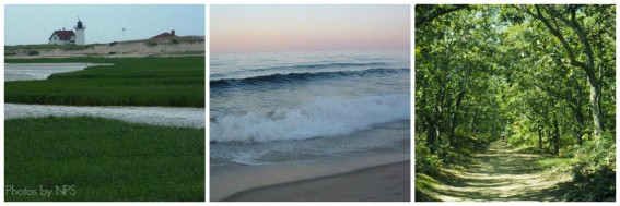 Cape Cod National SeaShore Multigenerational Vacation Cape Cod