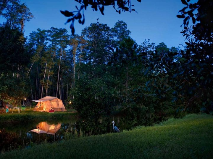 Should Your Family Stay at Disney's Fort Wilderness Resort?