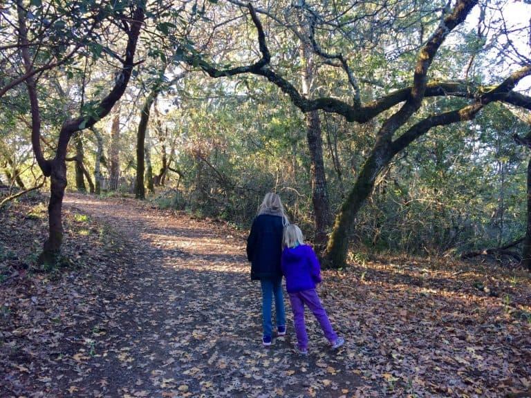 things-to-do-in-Santa-Rosa-jack-london-park