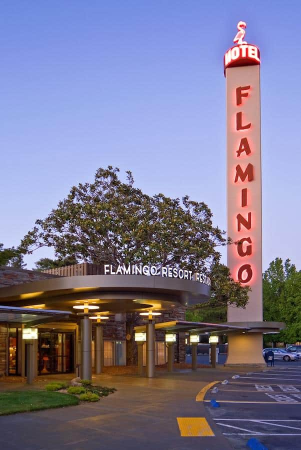 flamingo-hotel-things-to-do-in-santa-rosa