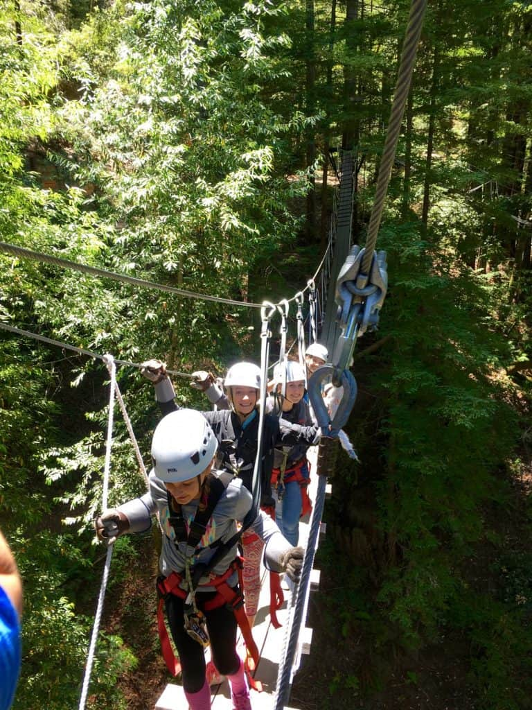 canopy-tours-fun-things-to-do-in-santa-rosa