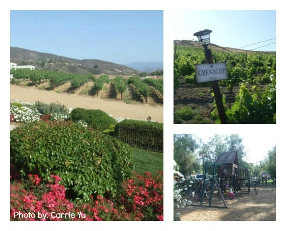 kid friendly Temecula, CA wineries