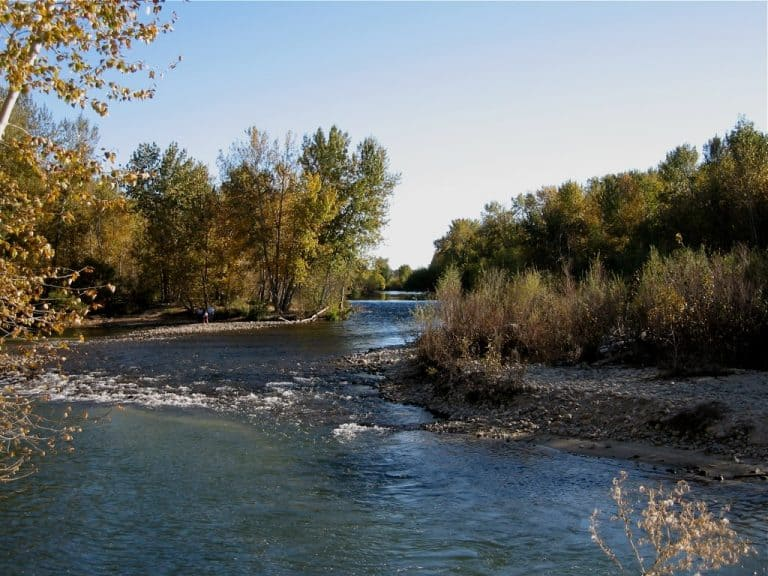 things to do in Idaho: Boise River Greenbelt