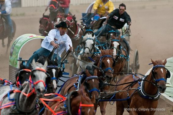 Calgary Stampede with Kids - Chuckwagon Race