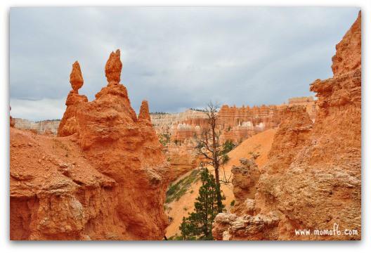 Bryce Canyon5