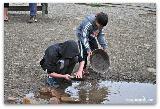 Panning for Gold in Colorado