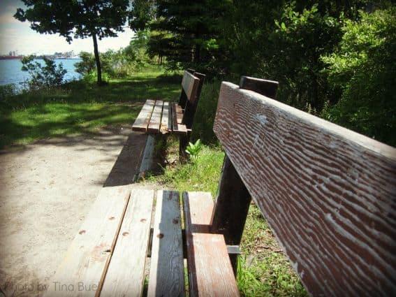 Toronto island bench