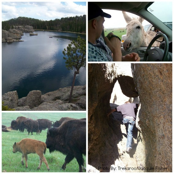 Kid friendly Black Hills South Dakota Custer State Park