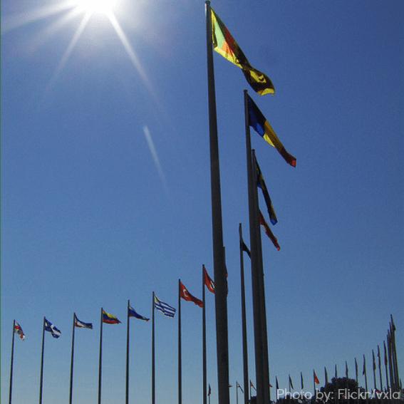 stade olympique montreal activities