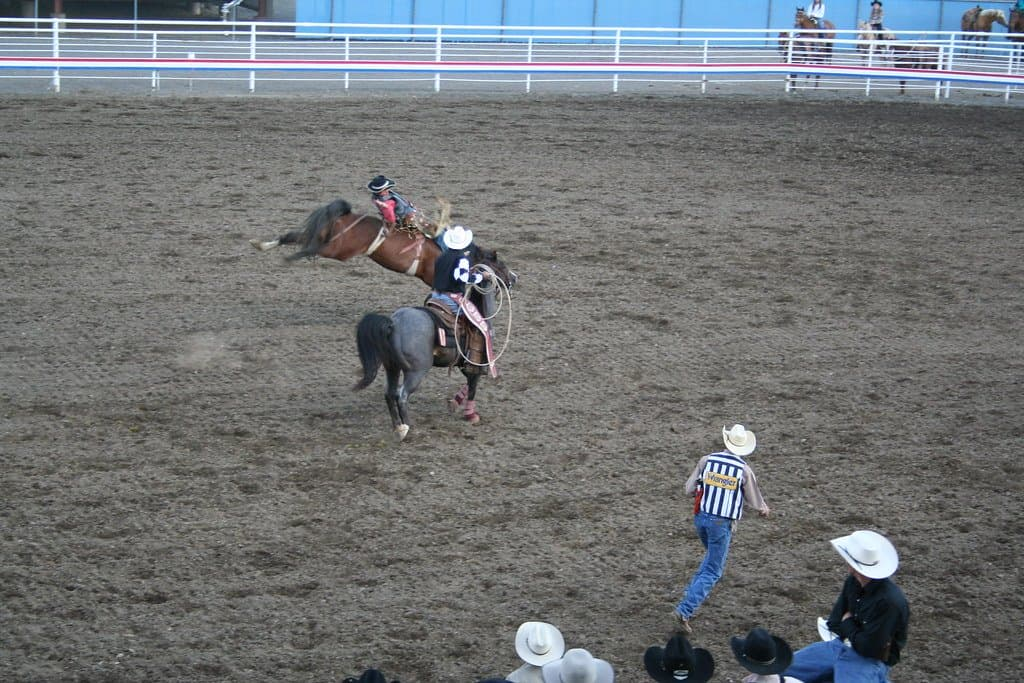 cody nite rodeo photo