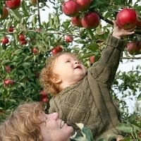 Best Kid-friendly U-Pick Farms: Apple_picking_kids_trekaroo_weekly_digest_carousel