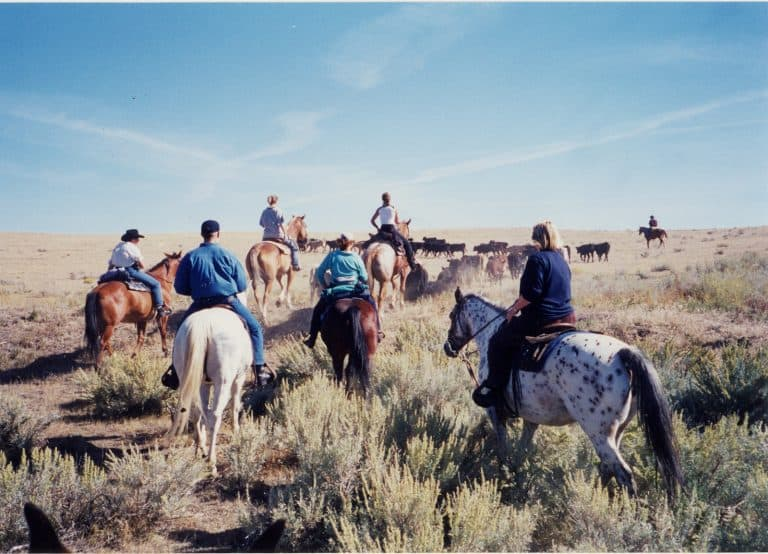 One of the best Things to do in Wyoming is visit a dude ranch