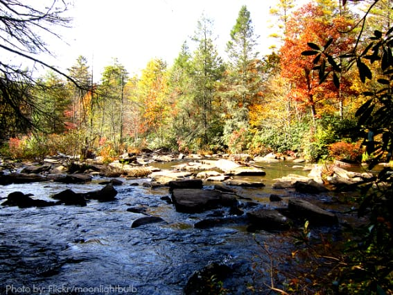 Best-Family-Vacations Asheville