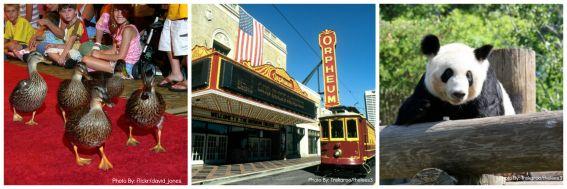 Memphis zoo, Peabody Hotel, Memphis Trolley, Memphis, TN