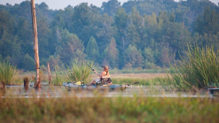 Top-10-things-to-do-in-Louisiana-Kayak-Fishing