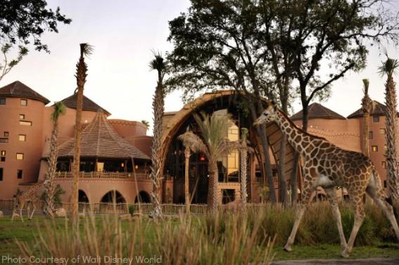 disney animal kingdom lodge2