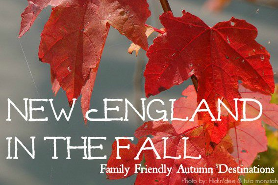 Explore New England in the fall with your family!