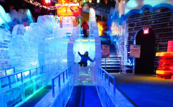Ice Slides at Gaylord Palms