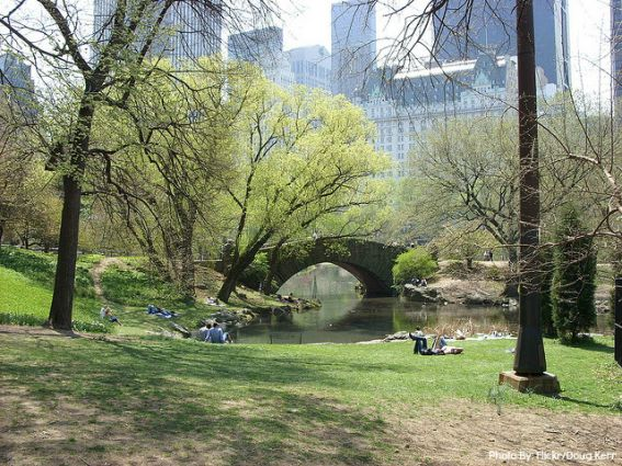 New-York-City-Central-Park-travel-like-a-celebrity