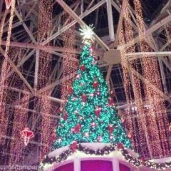 The Best Orlando Christmas Events in 2020 for Families