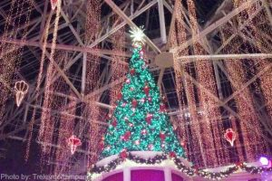 Christmas events in Orlando Photo by : trekaroo/tampamama