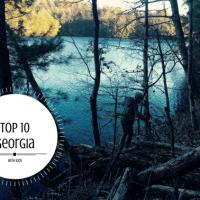 Top 10 Georgia FI