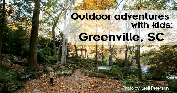 greenville_falls_reedy