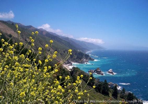Carmel Monterey Big Sur